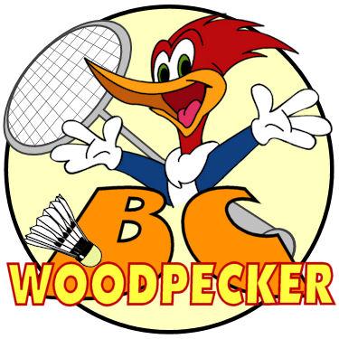 BCWoodpecker logo final mini